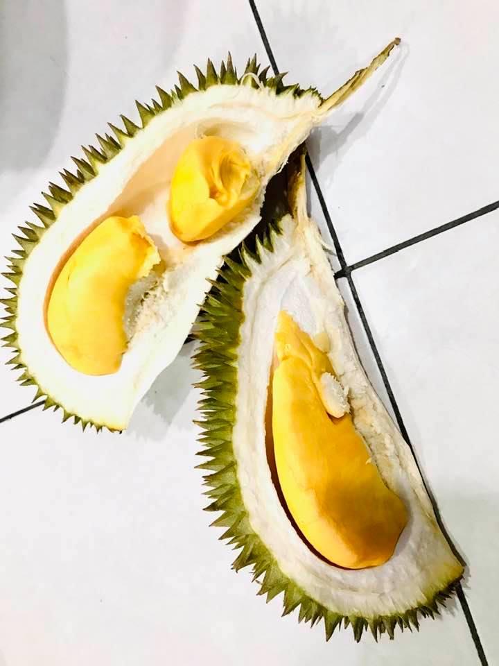 Bila musim durian, tak sudah pekena durian