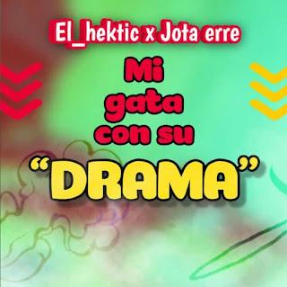 122589327 664396294470701 268716020351246612 n - El hektic feat: Jota erre - Mi gata con su drama