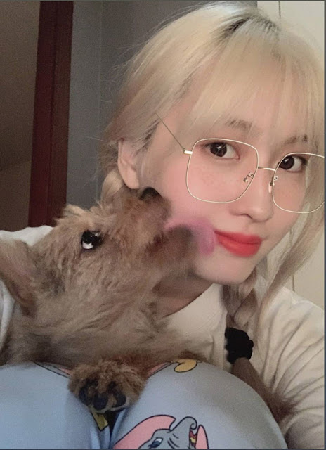 Twice Momo Boo Pictures