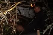 Pohon Jengkol Tumbang dan Hancurkan Rumah Rumaini di Bener Meriah