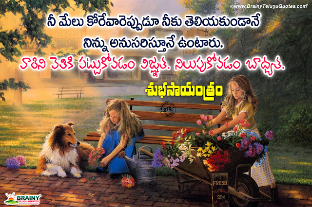 telugu quotes, best relationship quotes, good evening quotes, telugu life quotes, famous good evening life thoughts