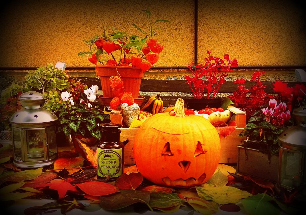 La Valigetta Rossa Halloween Nel Mio Giardino