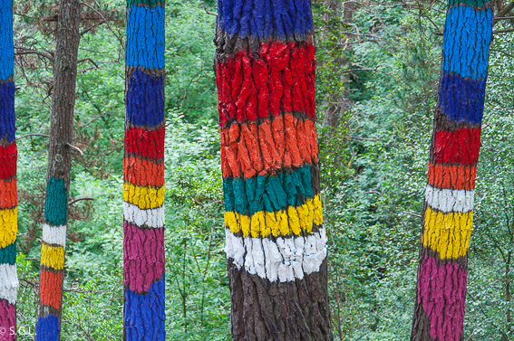 Bosque pintado de Oma. 5 lugares sorprendentes de Bizkaia