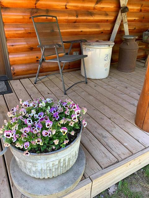 Photo of garden junk