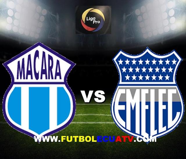 Macará recibe a Emelec en vivo desde las 12:00 horario local a efectuarse en el reducto Bellavista de Ambato siendo uno de los encuentros más atractivos de la fecha ocho del campeonato ecuatoriano, siendo el árbitro principal José Luis Espinel con transmisión del canal oficial GolTV.