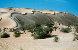 Mauritania becomes Coronavirus free.
