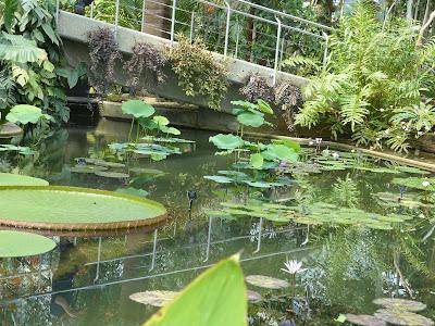 serres Kew Gardens Londres