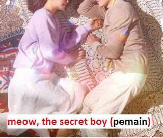 Biodata Pemain Drama Korea Meow, the Secret Boy