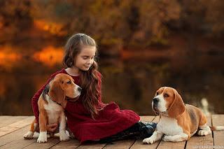 Köşe Yazısı Hayvan Sevgisi ile ilgili aramalar hayvan sevgisi ile ilgili yazı  psikolojide hayvan sevgisi  hayvan sevgisi anlamı  hayvan sevgisi ekşi  insan hayvan sevgisi  hayvan sevgisi ile ilgili atasözleri  çocuğun hayvan sevgisi ile ilgili sözler  hayvan sevgisi ile ilgili makaleler