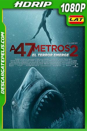 A 47 metros 2 (2019) HDRip 1080p Latino – Ingles