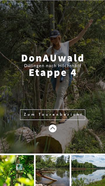 Premiumwanderweg DonAUwald  Etappe 4 von Dillingen nach Höchstädt 32