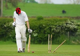 of cricket /2020