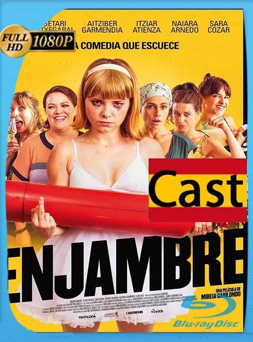 Enjambre (2020) 1080p WEB-DL Castellano [GoogleDrive] [tomyly]