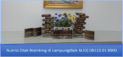PROMOSI, 08123 01 8900 (Bpk. Alid), Nutrisi Otak Brainking di Lampung