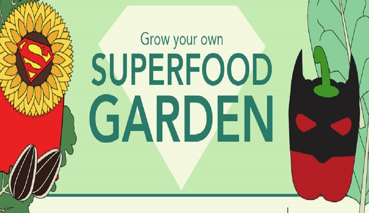 Superfood Garden #infographic