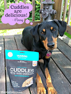 rescued doberman mix puppy the honest kitchen dog treats