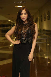 Angela Krislinzki in Transparent Black Gown at Rogue Movie Teaser Launch 1st March 2017 036.JPG