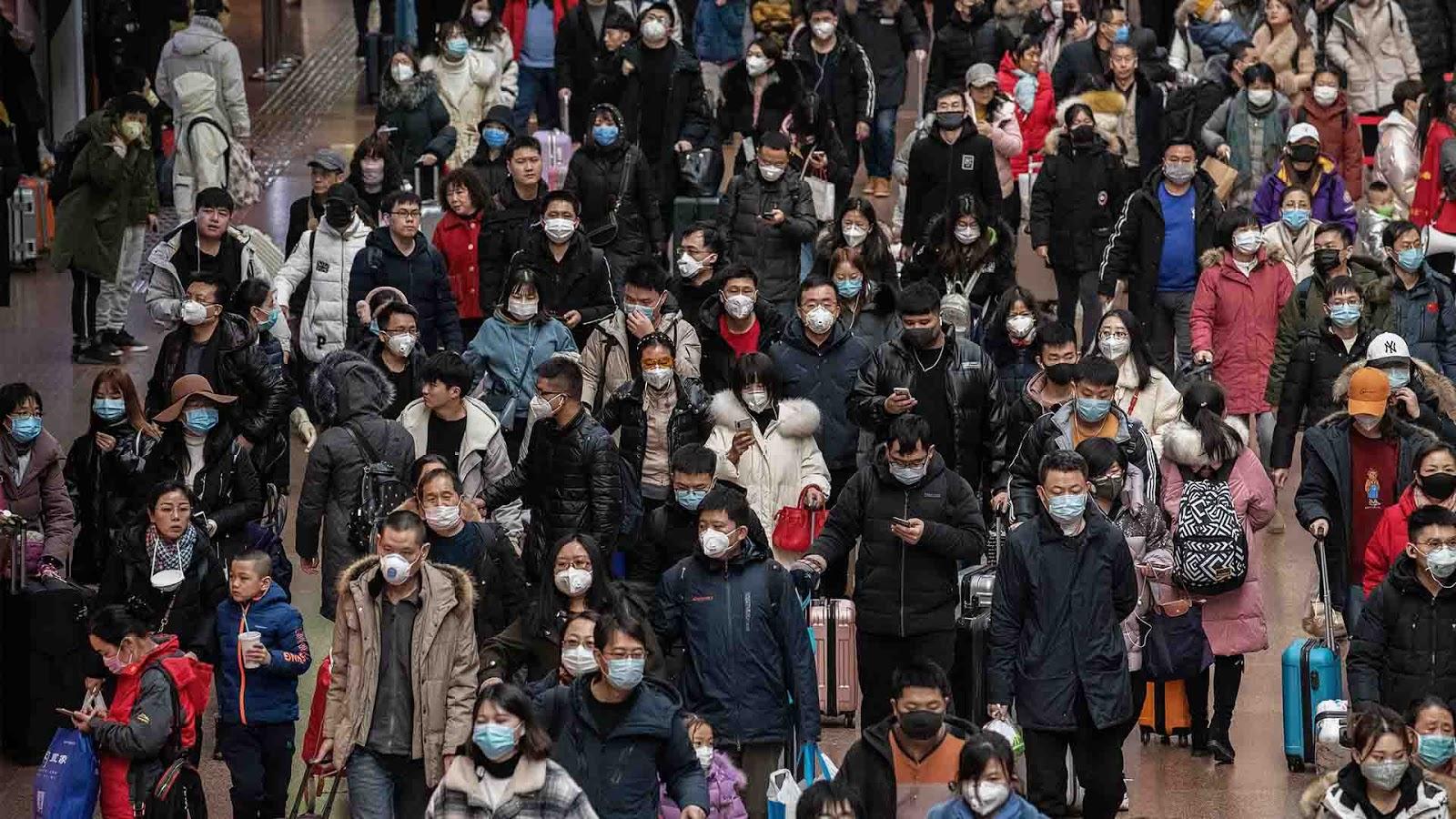 WHO Berharap Diundang Cina Selidiki Sumber Virus Corona