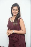 Nikki Galrani in a Brown Shining Sleeveless Gown at Nakshatram music launch ~  Exclusive 044.JPG