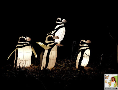 Illuminated Penguins Bronx Zoo Holiday of Lights 2019