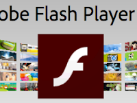 Adobe Flash Player Offline Installers (recommended)
