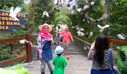 Piknik Hore dengan Big Bird ke Eco Green Park - Batu