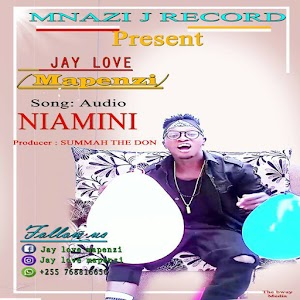 Download Mp3   Jay Love - Niamini