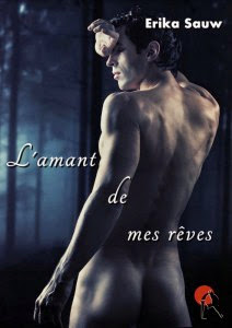 http://lovereadandbooks62.blogspot.fr/2014/10/chronique-39-lamant-de-mes-reves-de.html