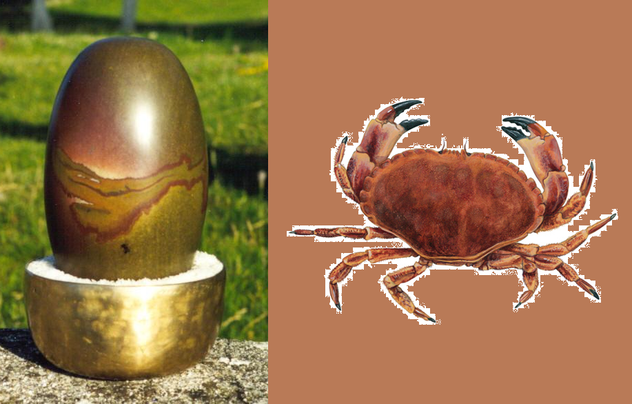 In Surat (Gujarat) temple devotees offer live crabs to Lord Shiva