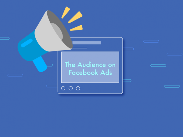 How to segment the audience of our ad in Facebook Ads?