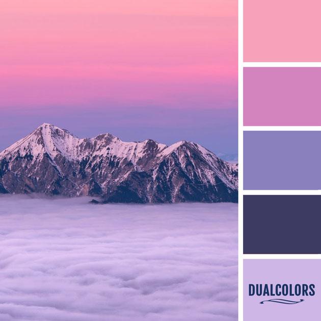 color_paleta_14