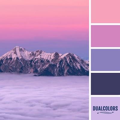 Color Paleta 14