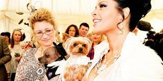 Pesta Pernikahan Anjing Termahal