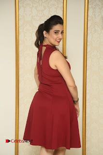 Telugu Tollywood Anchor Manjusha Pos in Red Short Dress  0035.JPG