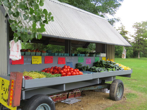 produce stand