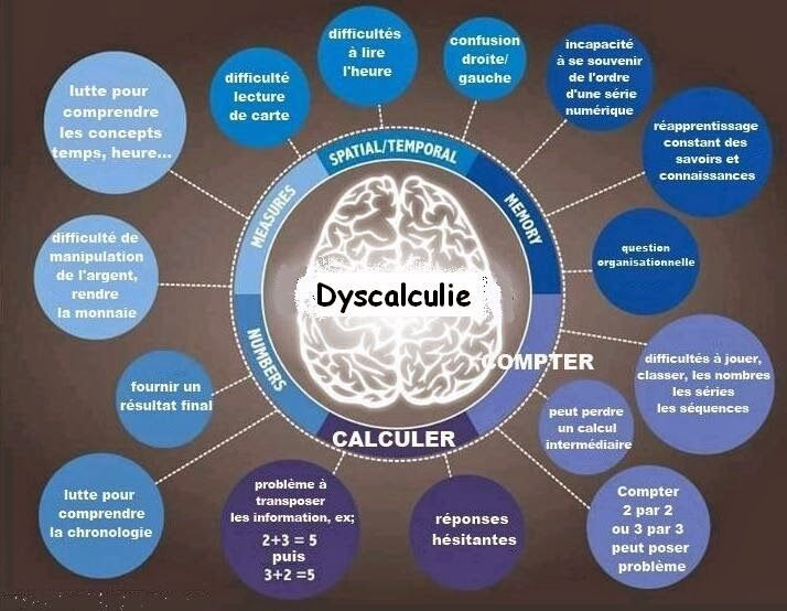 https://www.apedys56.fr/accueil/les-dys/dyscalculie/