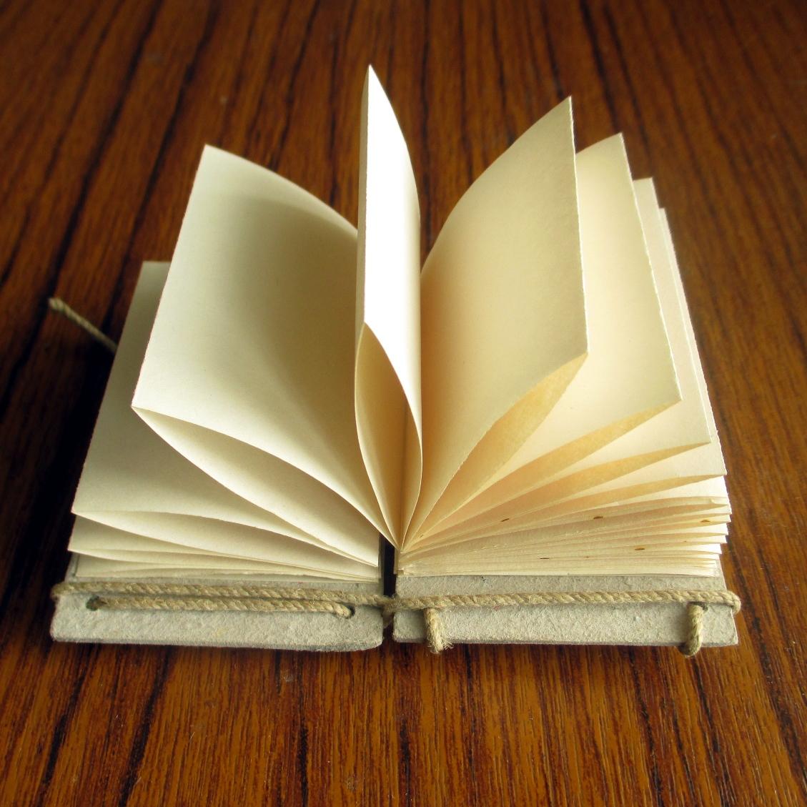 Srjskam: Accordion Book With Jacob's Ladder Binding