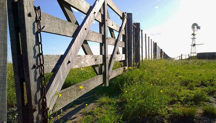 El campo y las inmobiliarias, entre la incertidumbre y la baja de los valores