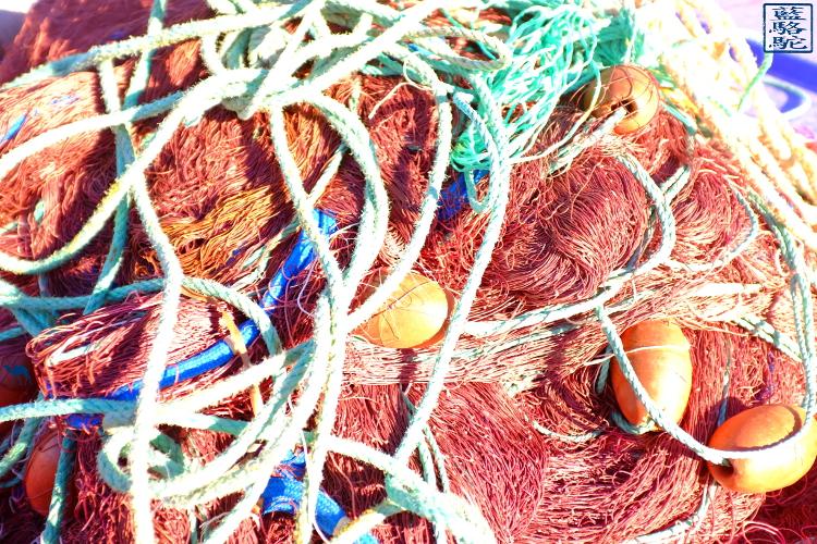 Le Chameau Bleu - Blog Voyage Port Brusc - Séjour dans le var - Filet -Six fours les plages