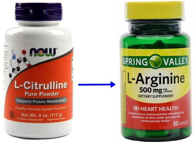 La citrulina promueve la producción de arginina y por ende de óxido nítrico
