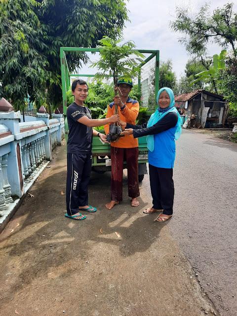 Bantuan Bibit (2)