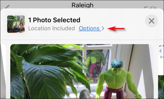 """انقر على """"الخيارات"""" قبل مشاركة صورة على iPhone."""