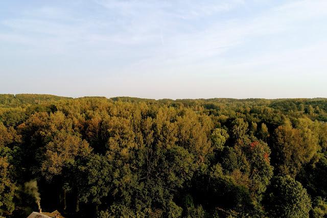 Pavilnių regioninis parkas