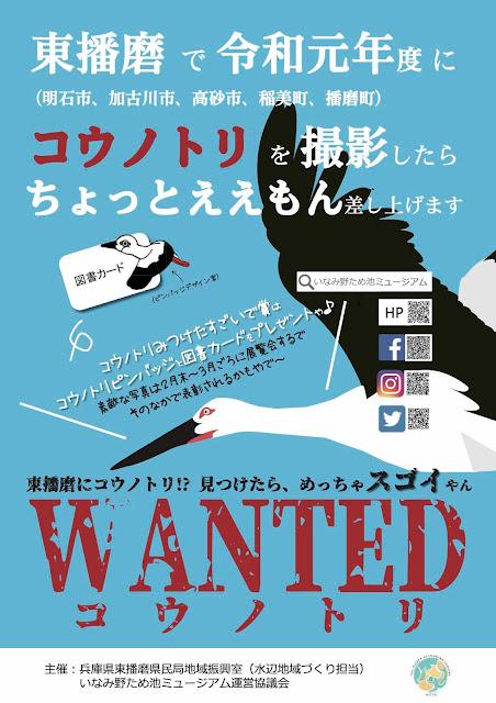 東播磨でコウノトリ撮影してちょっとええもんもらおう