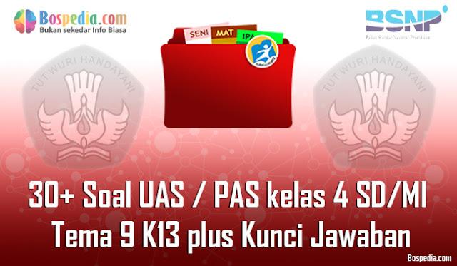 30+ Contoh Soal UAS / PAS untuk kelas 4 SD/MI Tema 9 K13 plus Kunci Jawaban