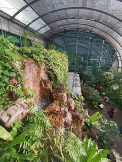 Aeropuerto Internacional Changi de Singapur.