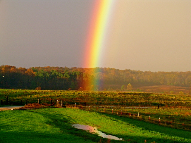 Iron Rations D6 Whats Really At The End Of The Rainbow