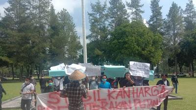 Aliansi Pemuda Peduli Petani Unjuk Rasa Tuntut Kenaikan Harga Komoditas Pertanian di Lampung Barat
