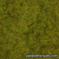 C-211 Césped 2 mm verde oliva amarillo