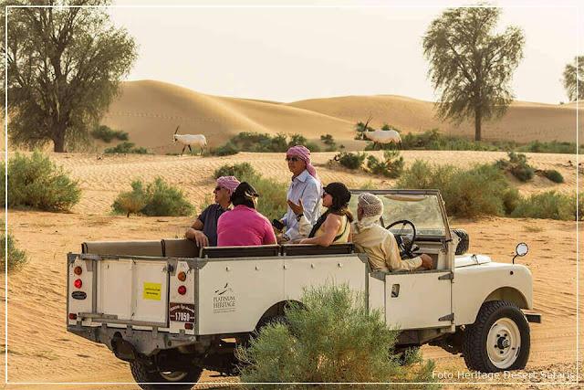 Safári no Deserto